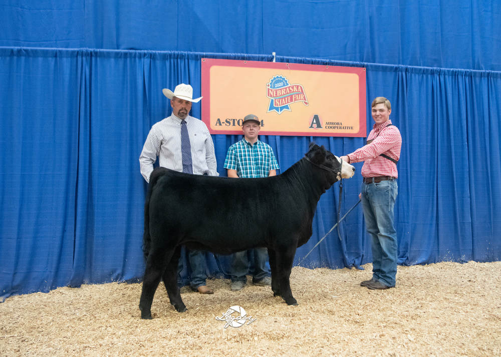 Borg shows Grand Champion at State Fair