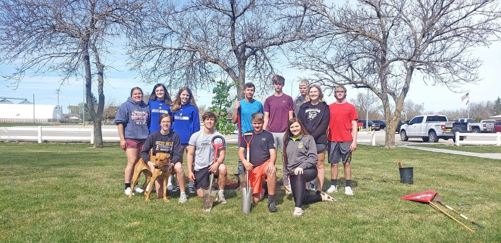 Trees planted on Arbor Day