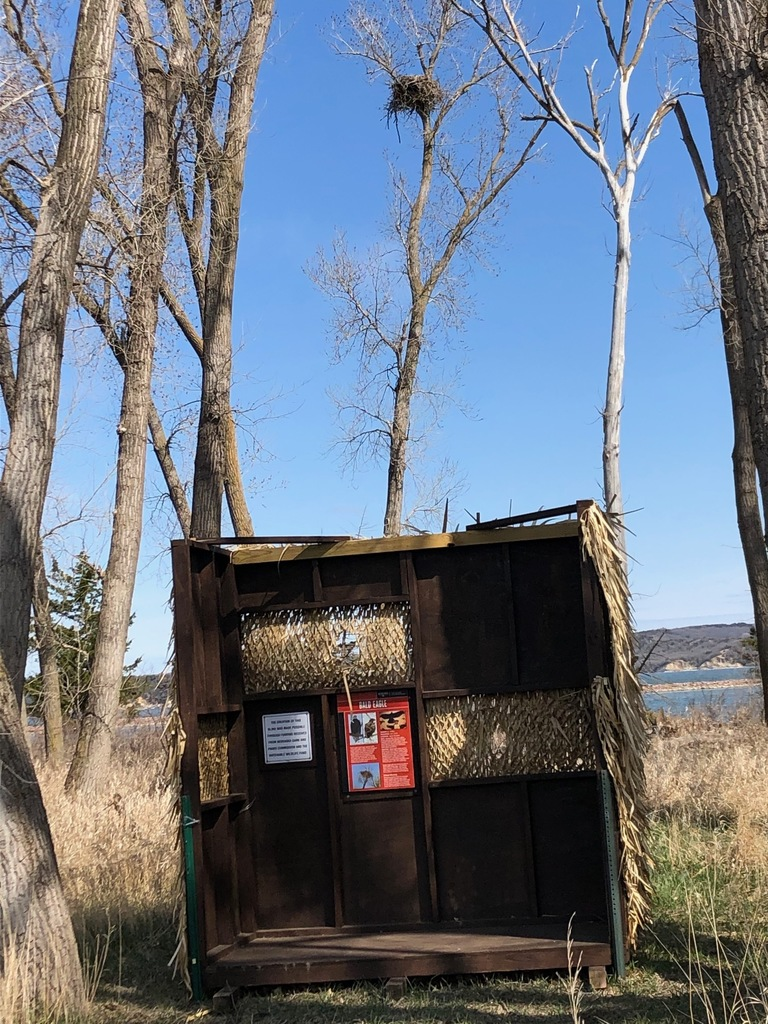 A viewing blind with an eagle nest in view at Weigand