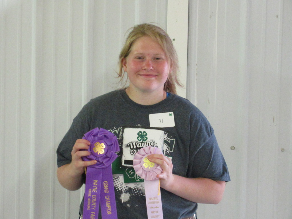 Megan Meyer has successful 4-H showing at Wayne Co. Fair