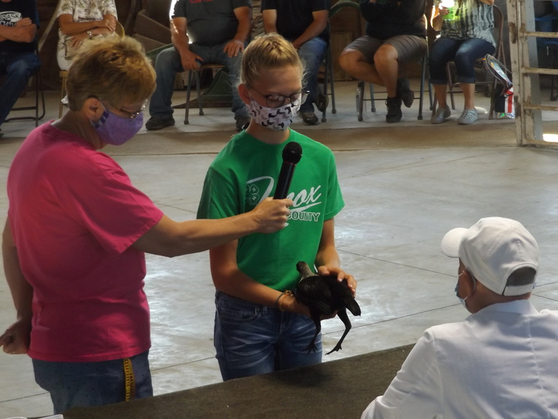 Youth still exhibit at 2020 Knox Co. Fair